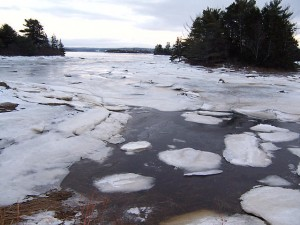 Ice floating on the tide, January 21, 2009