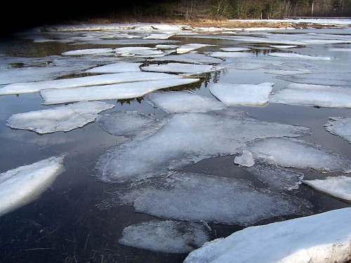 Thinning ice pans that we were walking on a month ago