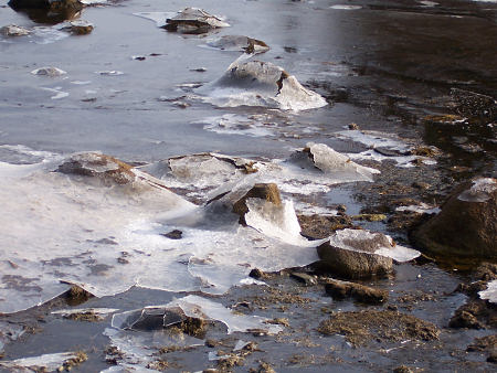 Closeup of ice left behind when the tide receded.