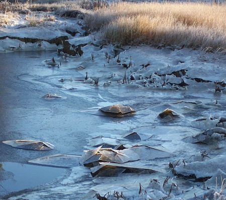 Ice breaks over rocks as the tide recedes