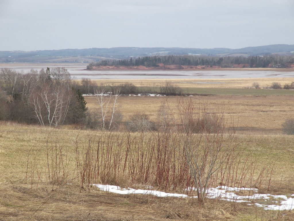 Annapolis Valley view, March 14